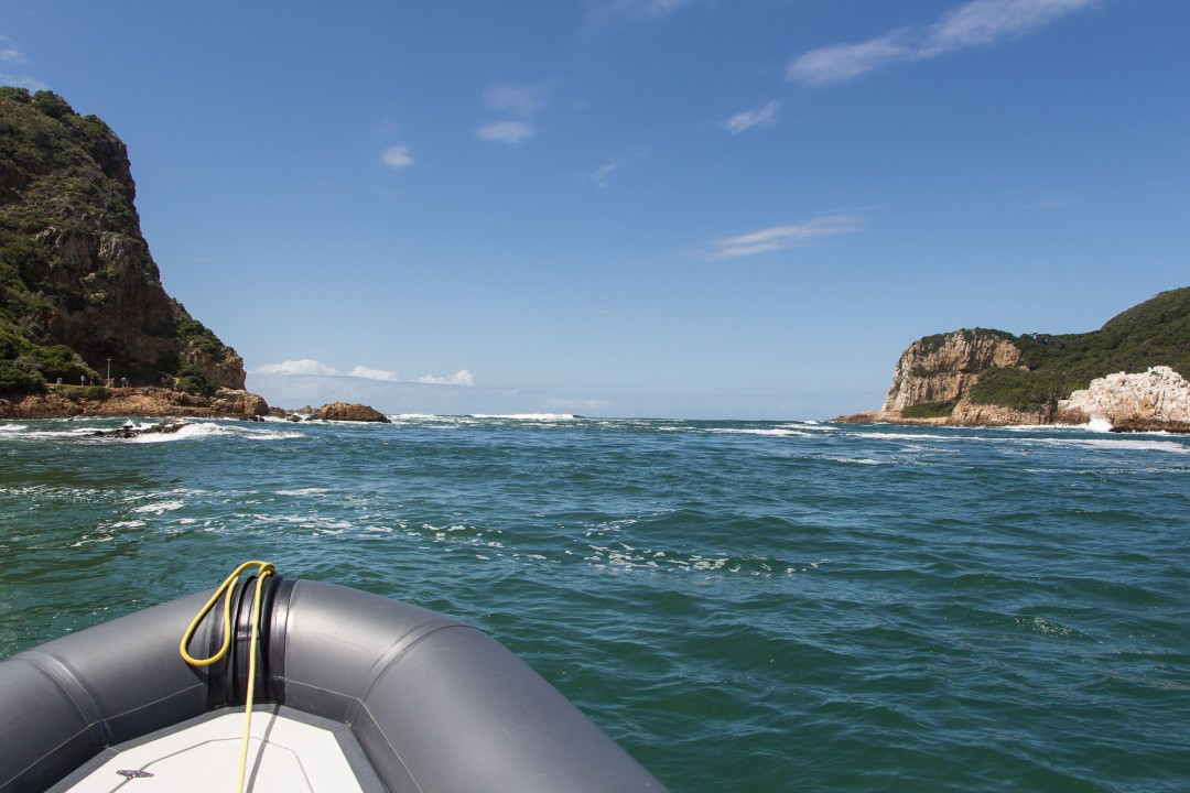 2014-12-20-1 Knysna RIB Adventures-008