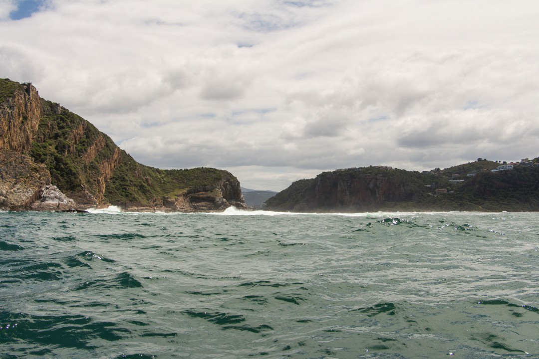 2014-12-20-1 Knysna RIB Adventures-010