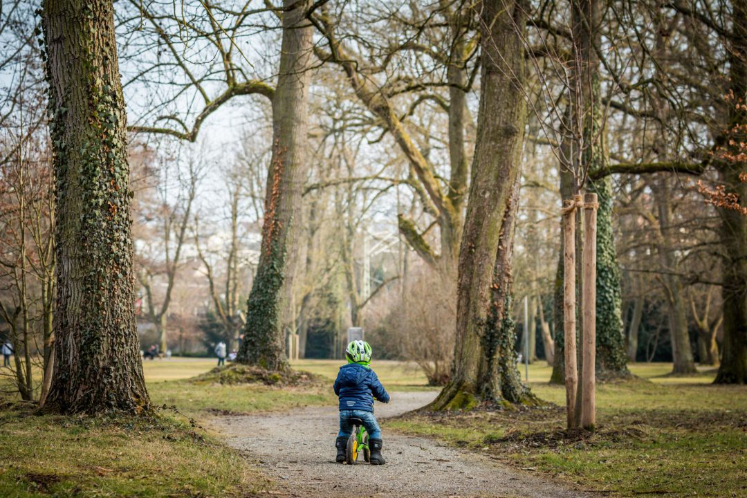 869Little boy and his bike in the park