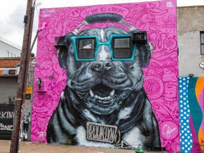 1284New York Bushwick Streetart