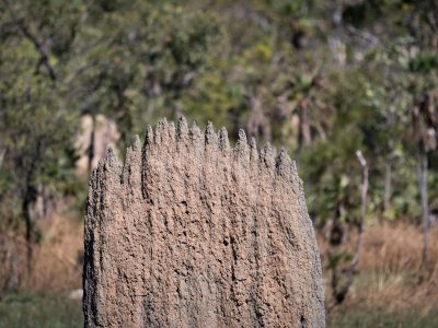 1500Australia – From Darwin to Adelaide