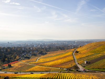 1900Autumn in the Vineyards Heilbronn